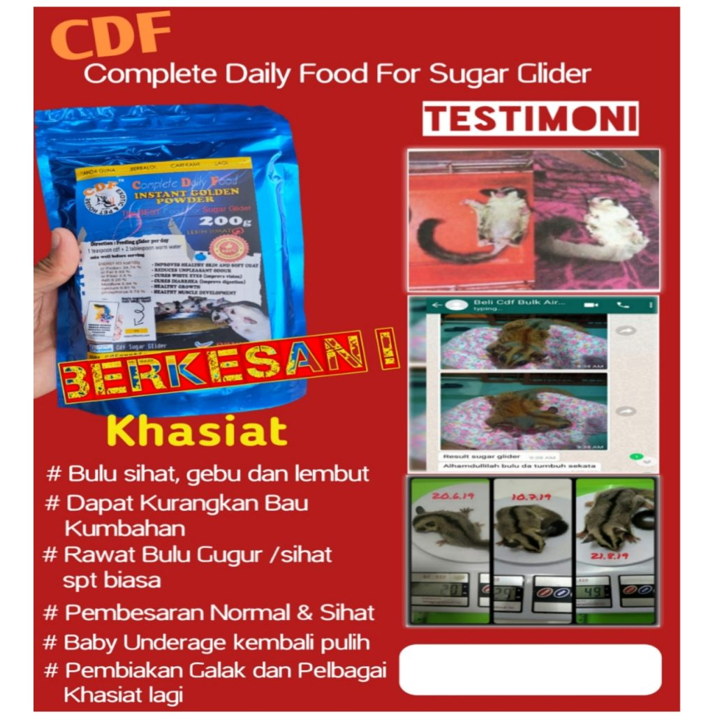 cdf sugar glider food diet