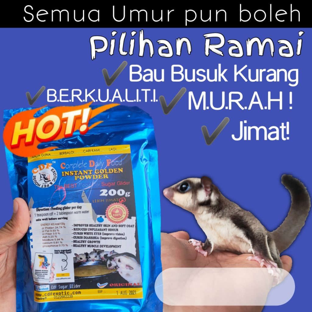 sugar glider food cdf