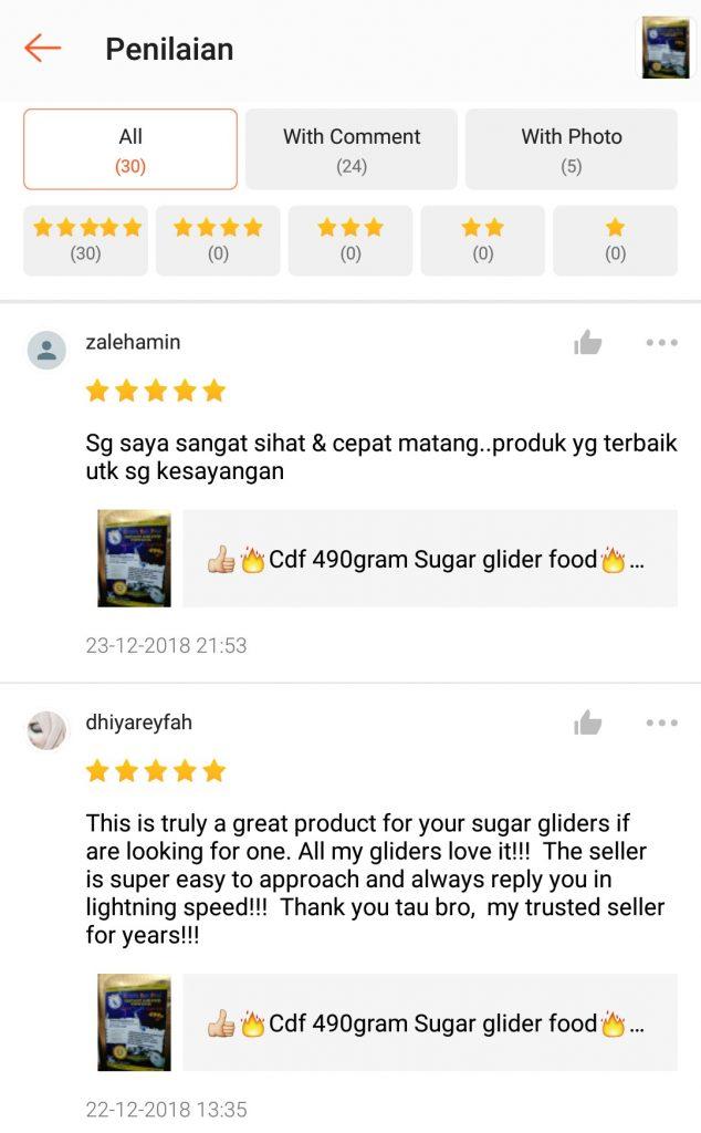 """Makanan sugar glide """"makanan sugar glider"""""""